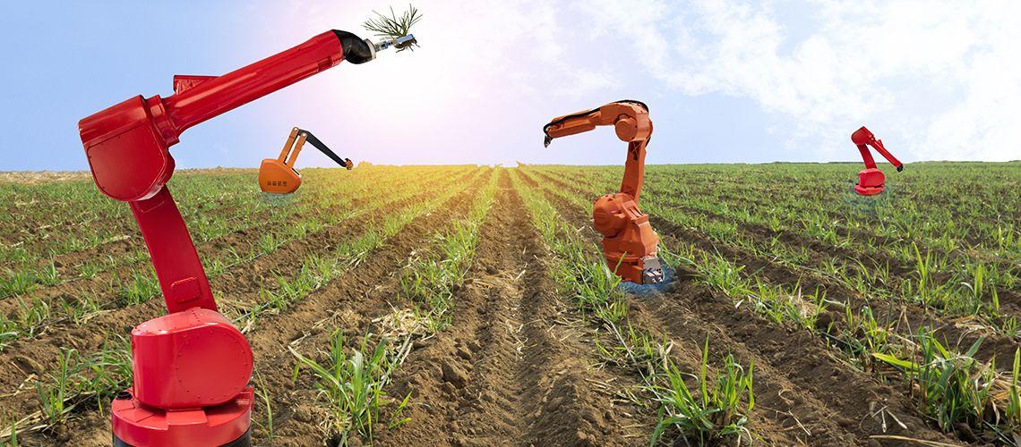 """In Giappone la prima fattoria """"robot"""""""