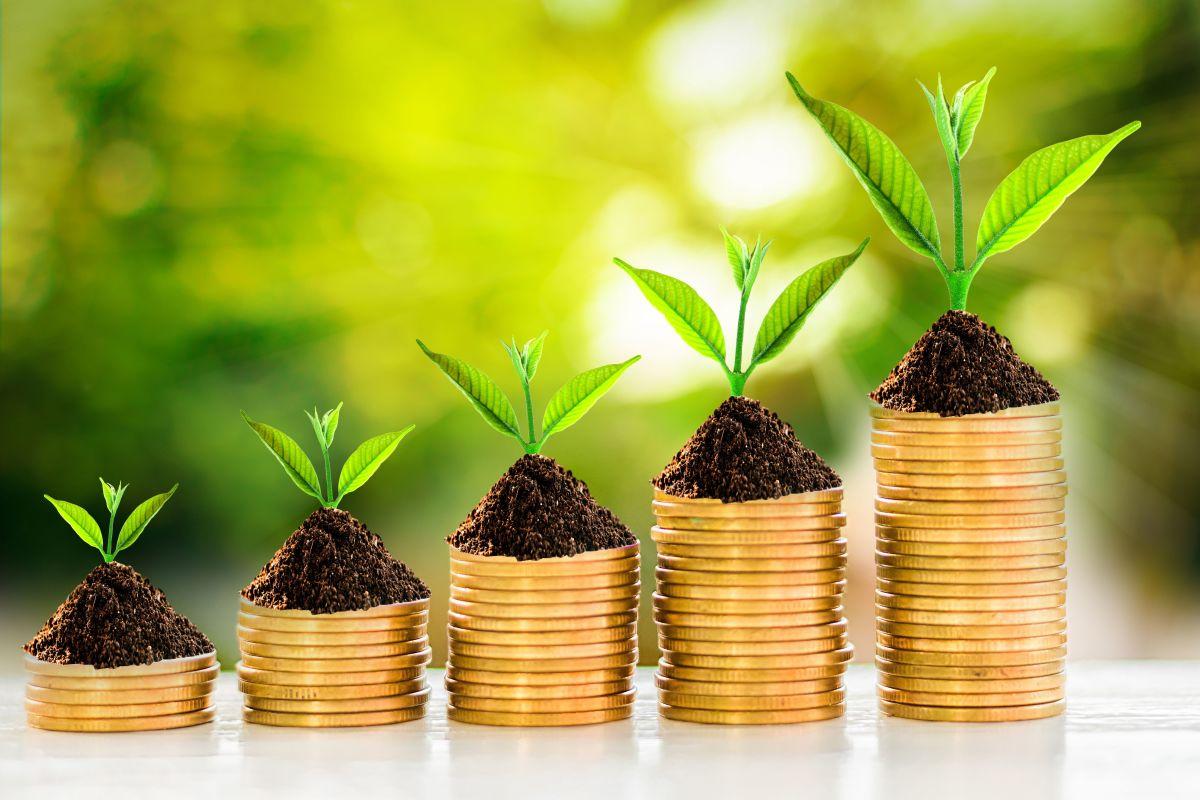 Diffuse le 5 regole d'oro per liberarsi dai debiti