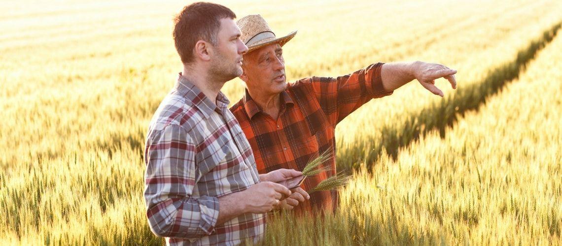 """""""Affiancamento"""" in Agricoltura, in vigore il nuovo contratto"""