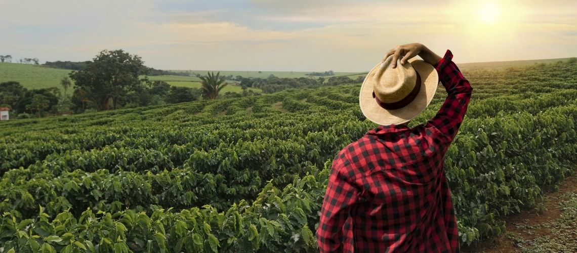La permuta dei terreni agricoli porta alla perdita di agevolazioni