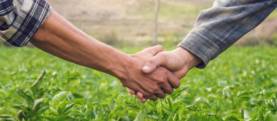 Costituzione di una società agricola: requisiti e agevolazioni