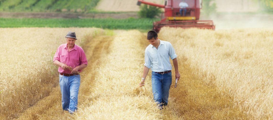 Il delicato momento del passaggio generazionale nelle società agricole