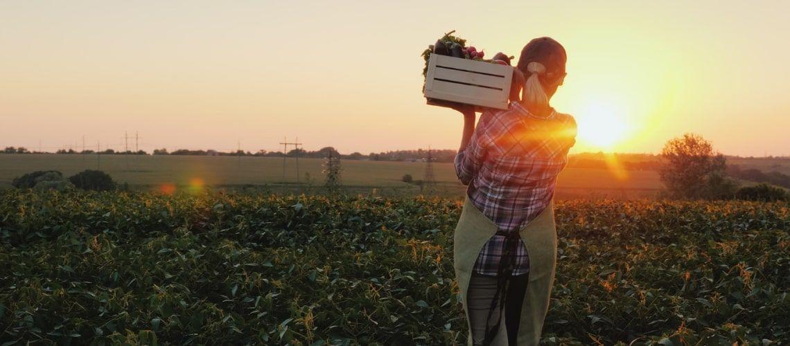 Piccola proprietà contadina: caratteristiche e agevolazioni