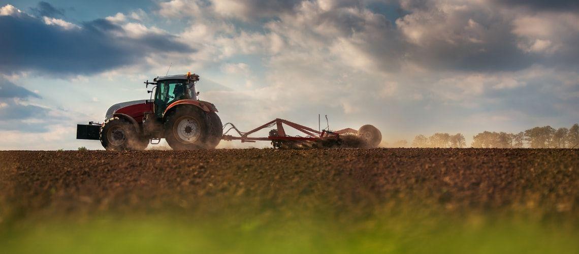 Come funziona la prelazione agraria: diritti, doveri e disciplina