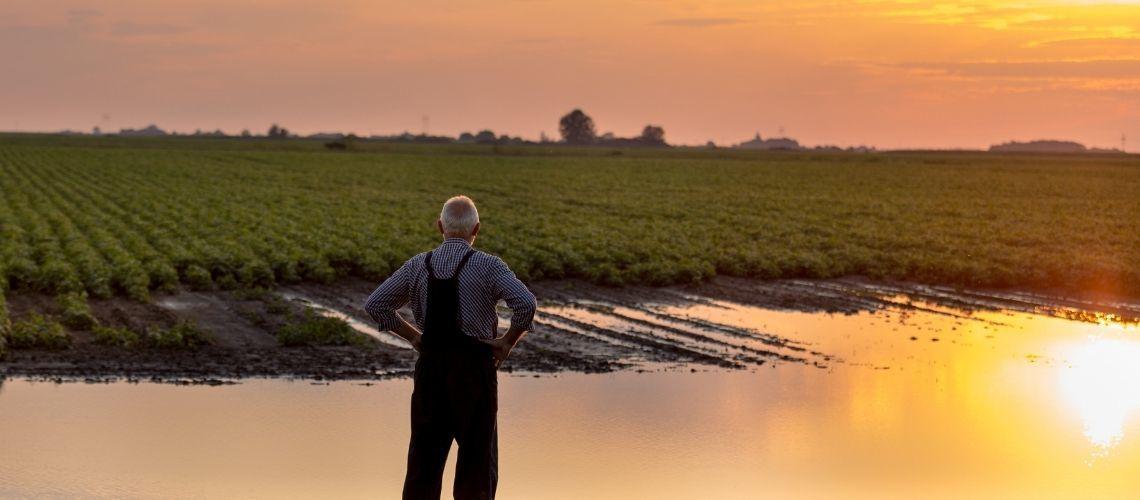 Green: tutto quello che devi sapere sul mondo agricolo e la sua regolamentazione