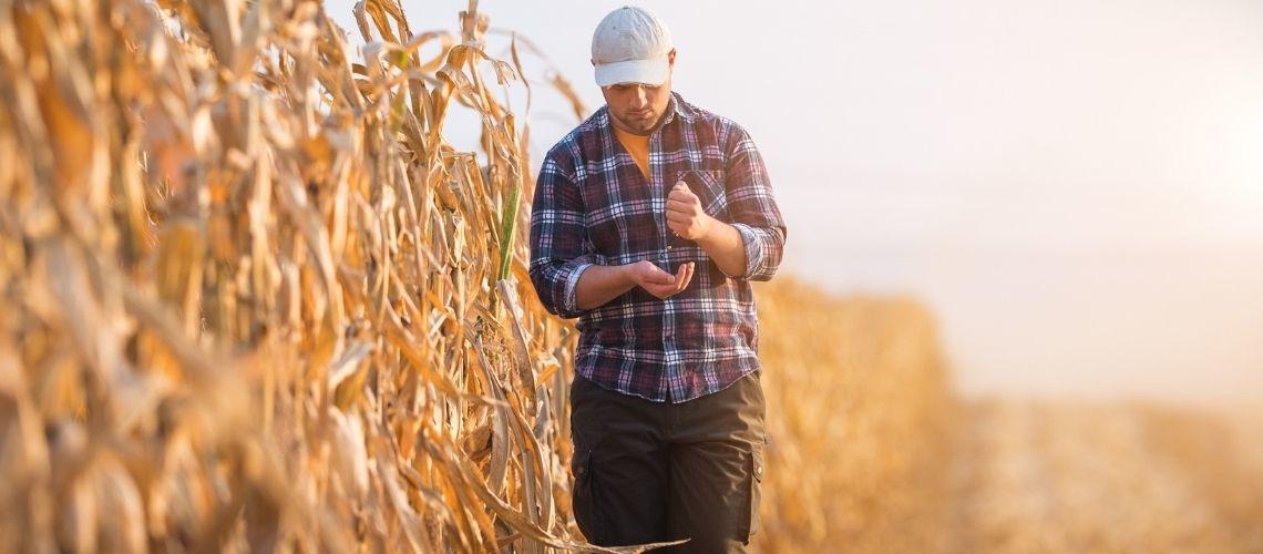 Agevolazioni per la piccola proprietà contadina: tutto quello ce c'è da sapere